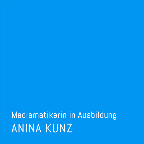 5d-interactive_anina-kunz_teambild